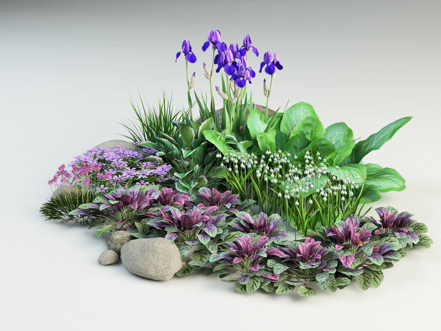 flower composition royalty-free 3d model - Preview no. 4