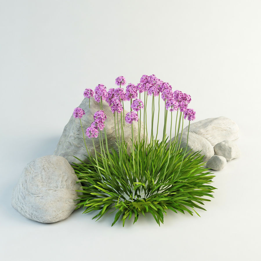 flower composition royalty-free 3d model - Preview no. 13