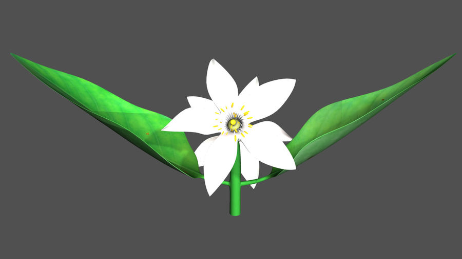 Citrus flower royalty-free 3d model - Preview no. 3