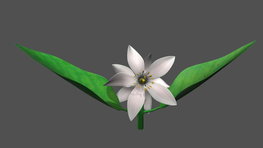 Citrus flower royalty-free 3d model - Preview no. 4