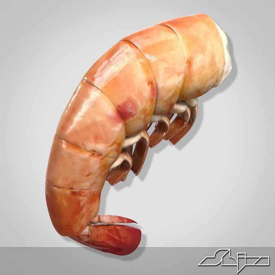 Shrimp 3 Cooked royalty-free 3d model - Preview no. 2