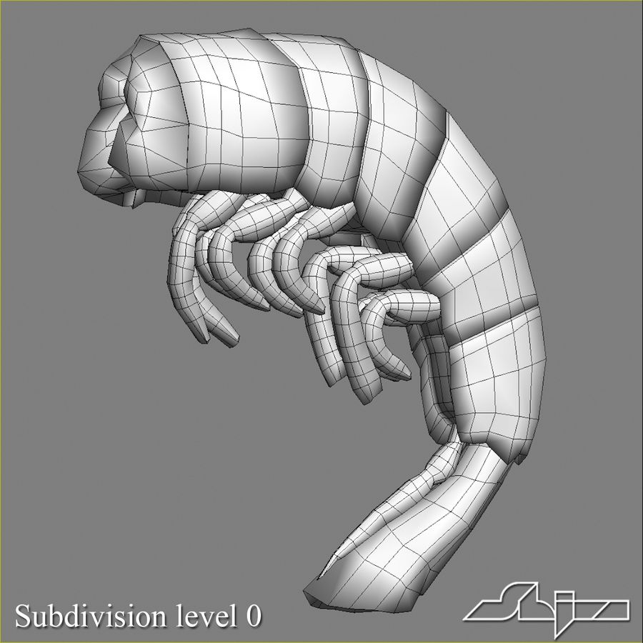 Shrimp 3 Cooked royalty-free 3d model - Preview no. 7