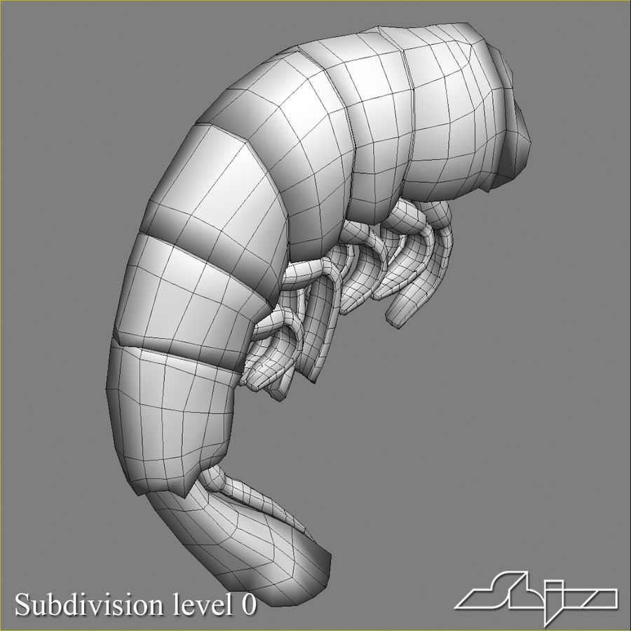 Shrimp 3 Cooked royalty-free 3d model - Preview no. 9