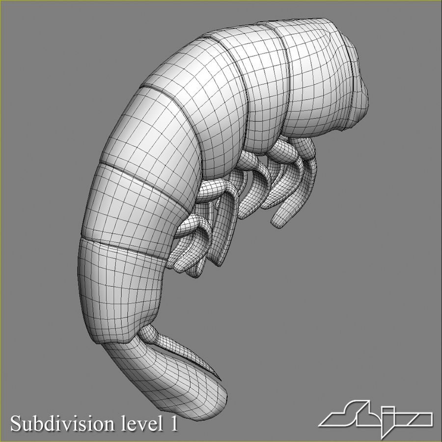 Shrimp 3 Cooked royalty-free 3d model - Preview no. 10