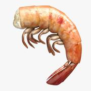 Shrimp 3 Cooked 3d model