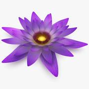 Lotusbloem 3d model