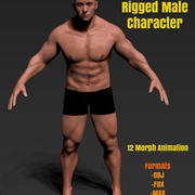 Low Poly Male Character Rigged 3d model
