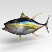 Tuńczyk 3d model