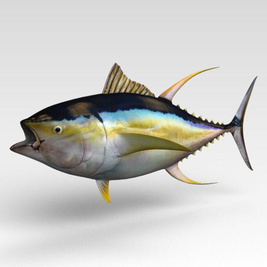 3d Tuna Fish: .3ds .obj .fbx .lwo .c4d .ma .max