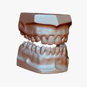 Zęby gipsowe 3d model