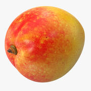 Mango 5 3d model