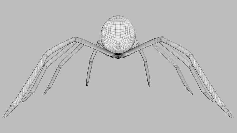 Black Widow Spider royalty-free 3d model - Preview no. 12