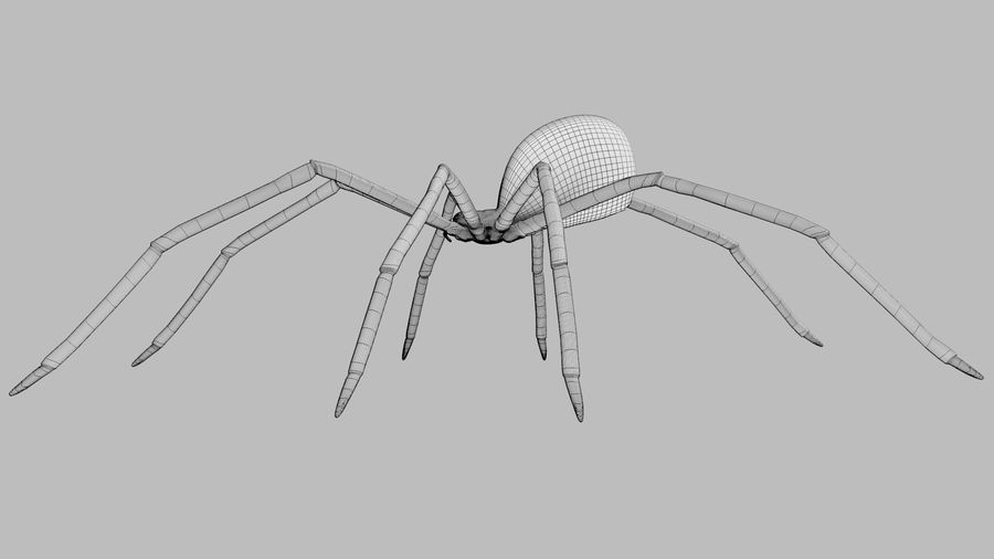 Black Widow Spider royalty-free 3d model - Preview no. 11