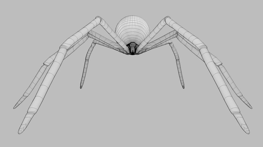 Black Widow Spider royalty-free 3d model - Preview no. 13