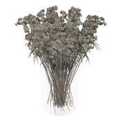 Kuru çiçekler 3d model