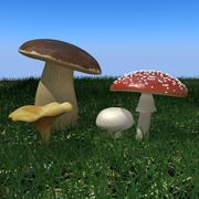 Sammlung der Pilze 3d 3d model