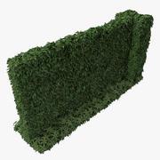 Green Ivy Wall 3d model