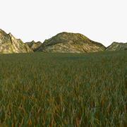 Grassland 3d model