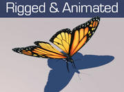 Animowany Monarch Butterfly 3d model