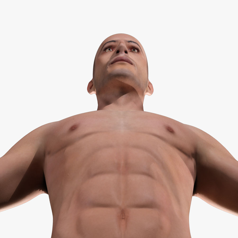 Anatomie humaine Corps masculin (peau uniquement) royalty-free 3d model - Preview no. 22