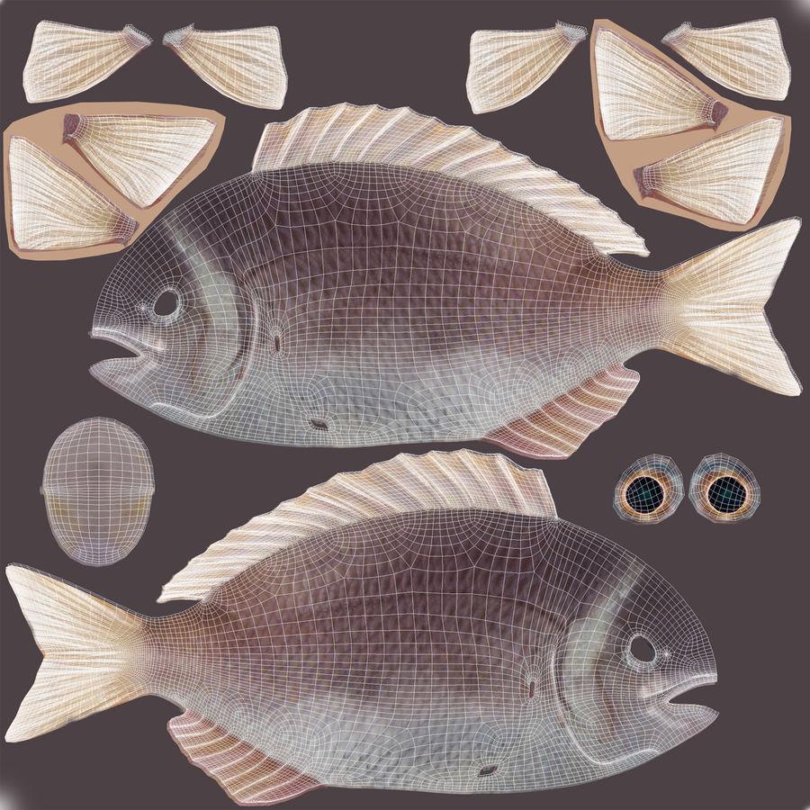 Peixe Dourada royalty-free 3d model - Preview no. 20