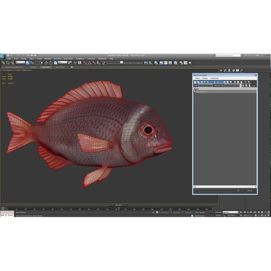Peixe Dourada royalty-free 3d model - Preview no. 23