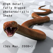 Generic Photoreal Snake 3d model