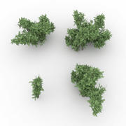 Kolekcja Low Poly Bush 3d model