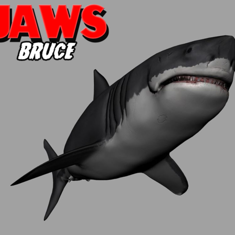 Jaws Bruce royalty-free 3d model - Preview no. 10