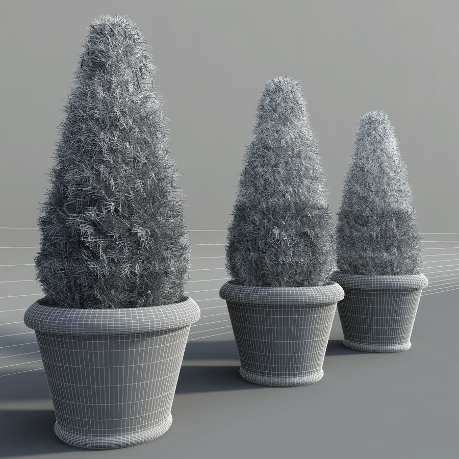 Fir Plants in Pots royalty-free 3d model - Preview no. 8