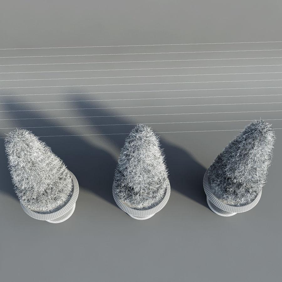 Tannenpflanzen in Töpfen royalty-free 3d model - Preview no. 9
