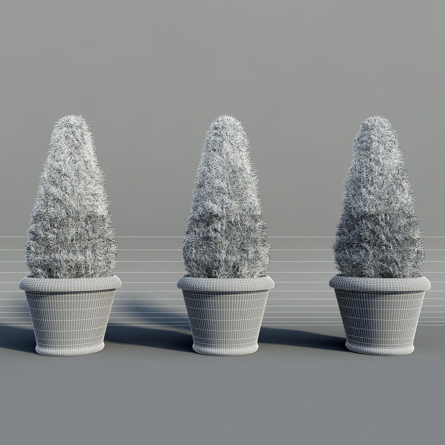 Fir Plants in Pots royalty-free 3d model - Preview no. 7