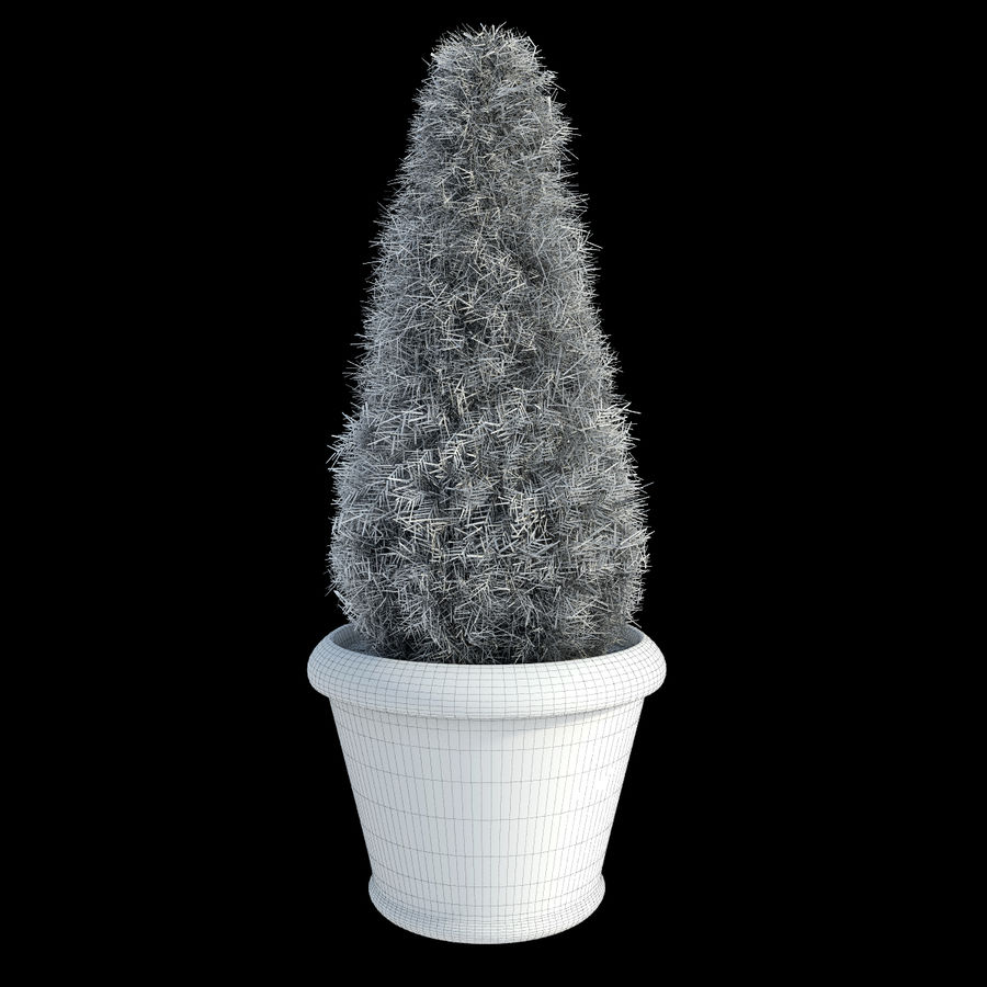 Fir Plants in Pots royalty-free 3d model - Preview no. 6