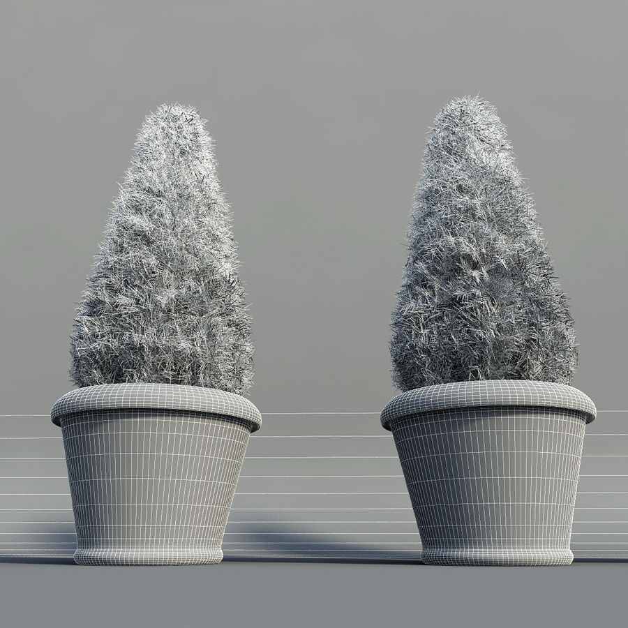 Fir Plants in Pots royalty-free 3d model - Preview no. 10