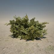 Duży Bush 3d model
