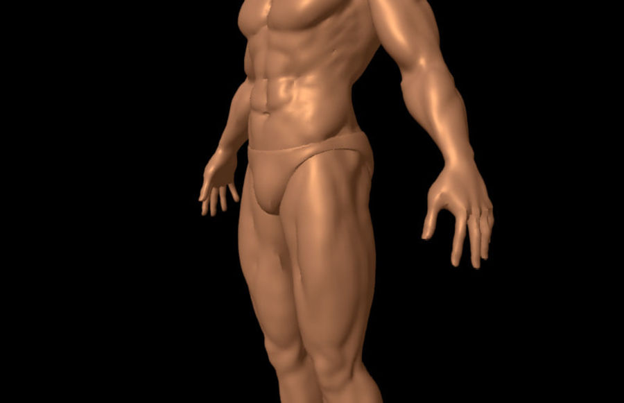 Corpo masculino sexy - anatomia humana masculina royalty-free 3d model - Preview no. 7