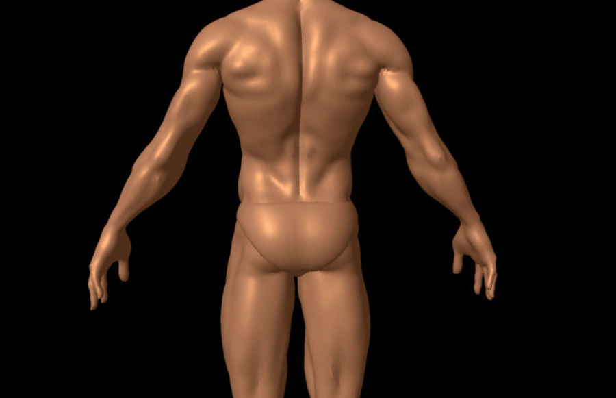 Corpo masculino sexy - anatomia humana masculina royalty-free 3d model - Preview no. 6