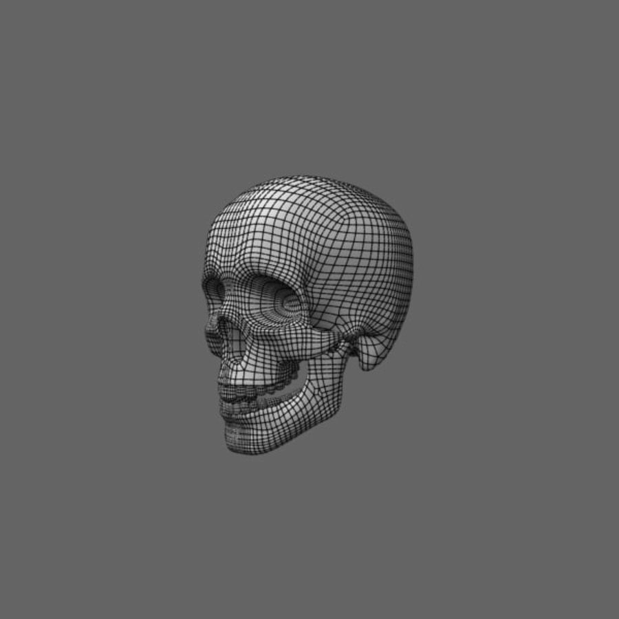 Human Skull royalty-free 3d model - Preview no. 16