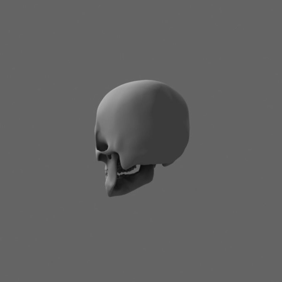Human Skull royalty-free 3d model - Preview no. 6