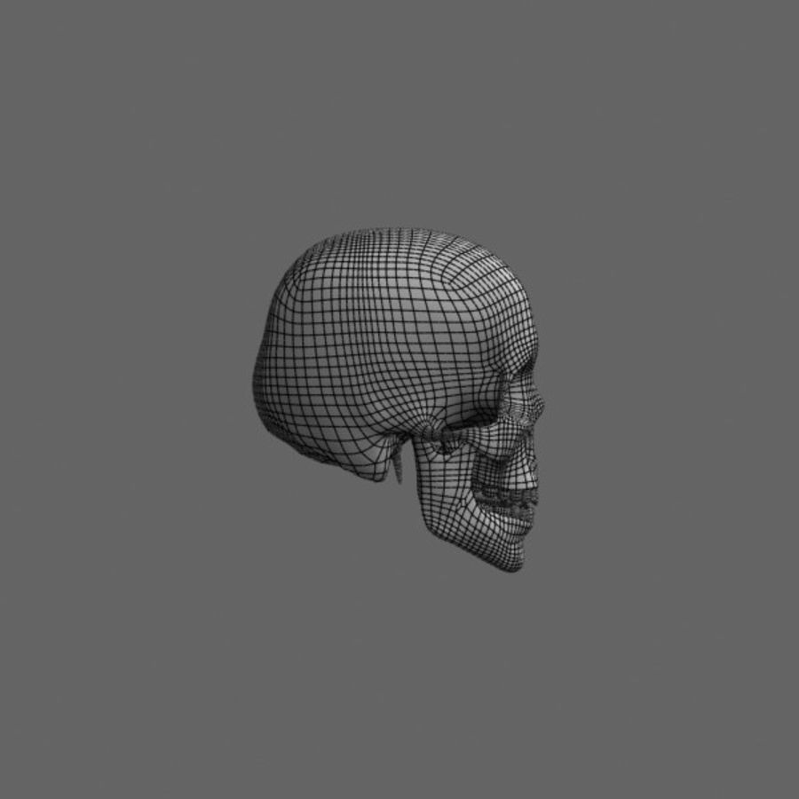 Human Skull royalty-free 3d model - Preview no. 11