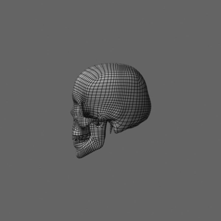 Human Skull royalty-free 3d model - Preview no. 15