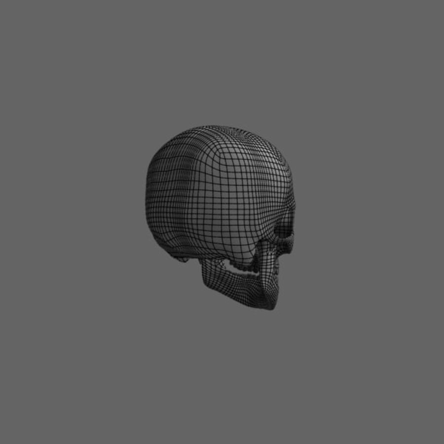 Human Skull royalty-free 3d model - Preview no. 12