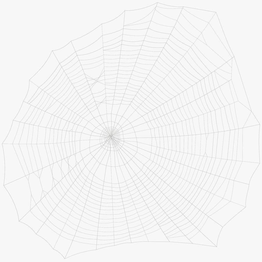 Teia de aranha royalty-free 3d model - Preview no. 1