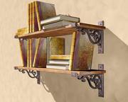 Old Bookshelf 3d model