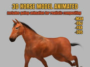 Horse Modello 3D animato 3d model