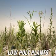 Låg poly växter 3d model
