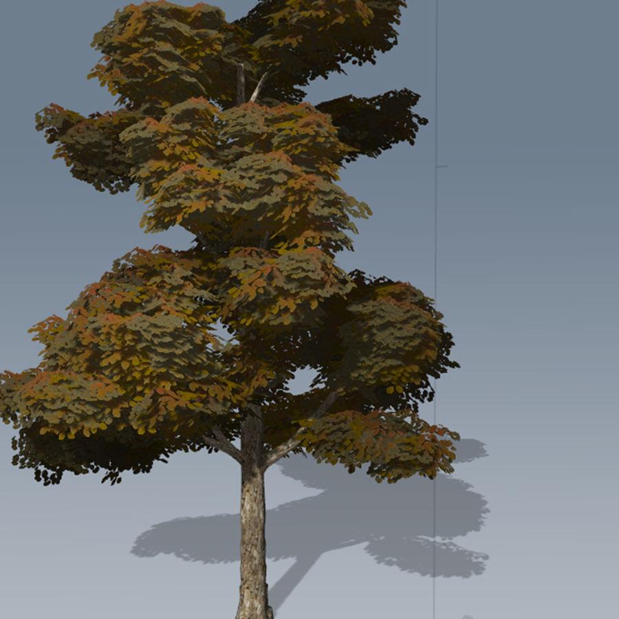 Conjunto de árvores de maçã CRYENGINE royalty-free 3d model - Preview no. 10