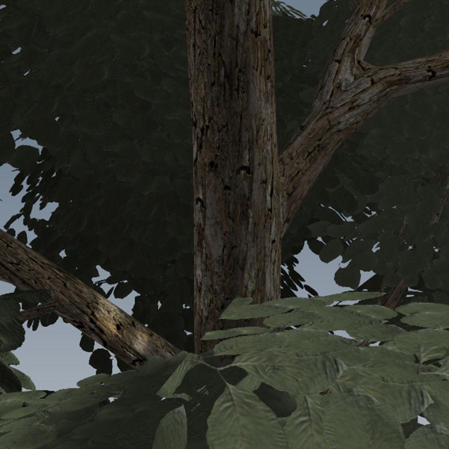 Conjunto de árvores de maçã CRYENGINE royalty-free 3d model - Preview no. 7