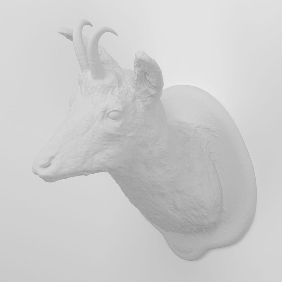 Taxidermie 01. Tête de chamois royalty-free 3d model - Preview no. 5