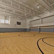 Academia de basquete 3d model